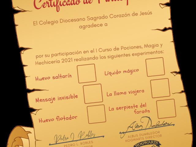 Certificado de participación. Magia en la escuela